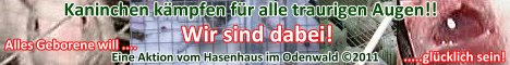 www.kaninchenrettung.de
